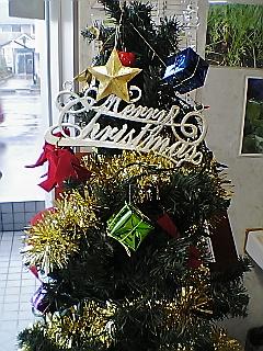 明日はクリスマスイブだ〜(o^∀^o)
