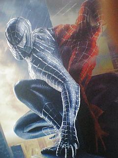 ボウケンノリの映画&DVDチェック32(スパイダーマン3)♪