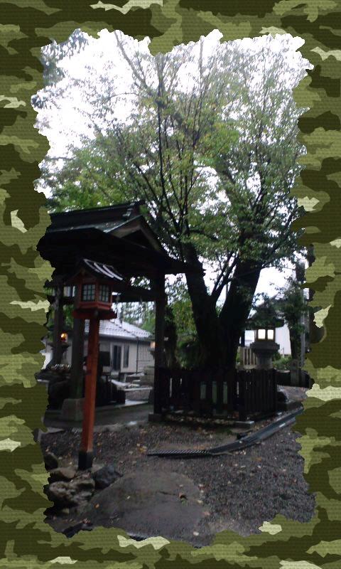 立志神社だ〜(`∇´ゞ