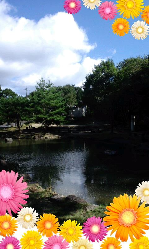 三雲城跡はけっこう広いよ〜♪〜θ(^0^ )