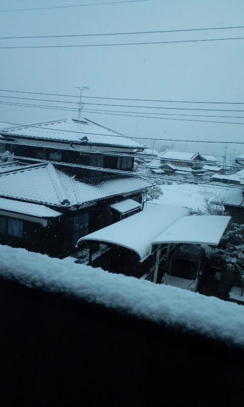 雪がけっこう積もってきたよ〜(≧∇≦)