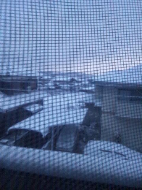 大雪だったよ〜( ̄▽ ̄;)